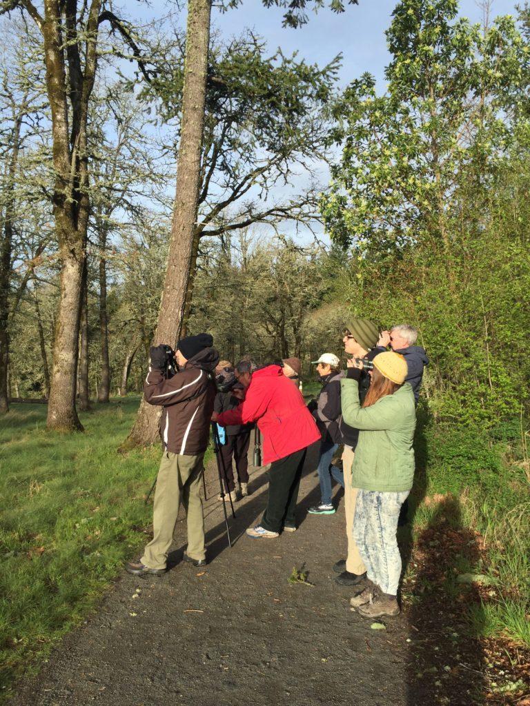 Cooper Mountain Birding Group