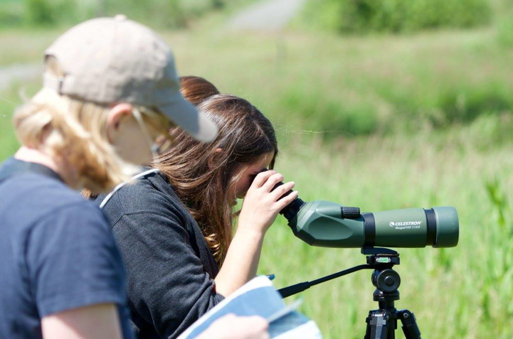 Christine scans the waterfowl while Kestin checks the field guides